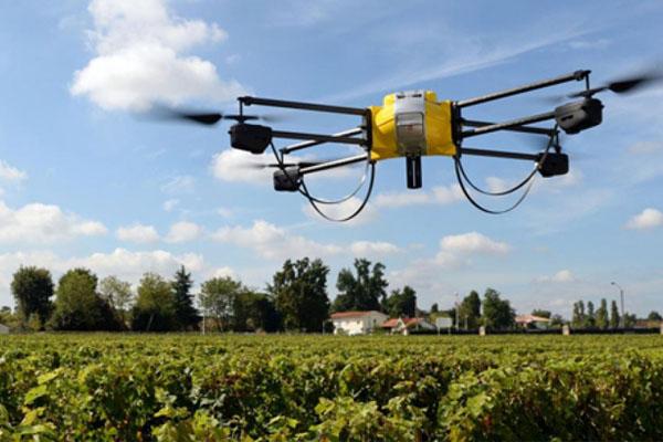Por qué los drones son el futuro de la agricultura