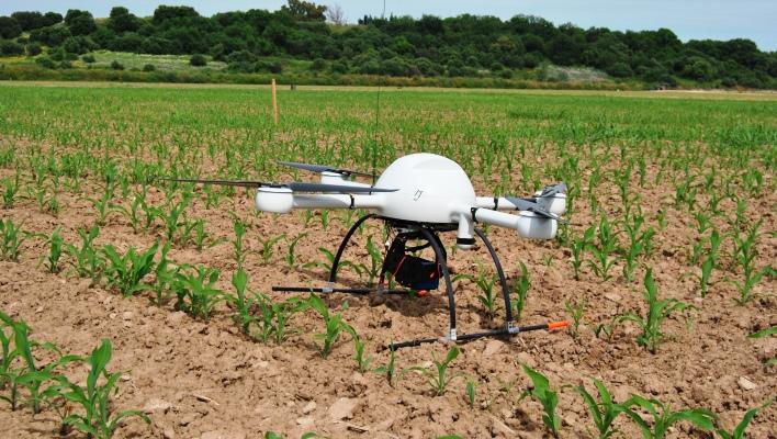 Drones para fotografiar árboles en 3D