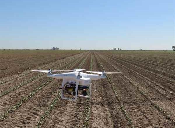 El control de las hierbas malignas por la agricultura de precisión