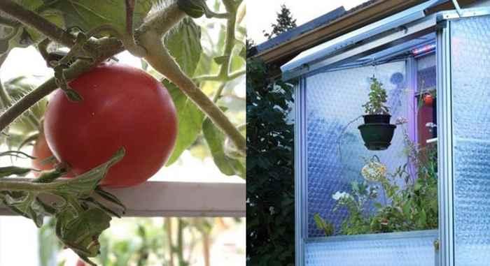 La energía solar en los invernaderos portátiles