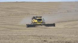 Uruguay y su impulso tecnológico al sector agropecuario