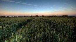 La agricultura de monitoreo y su crecimiento