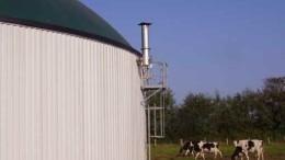 El biogás y una solución para productores agropecuarios